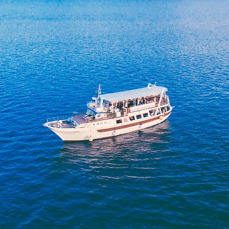 The Boat Party Split