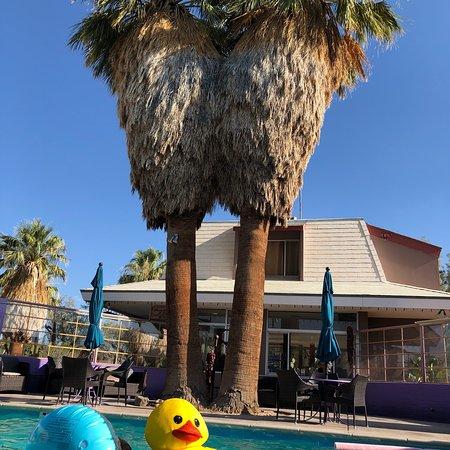 29 Palms Inn: photo0.jpg