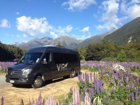 VIP Milford Sound Day Tour