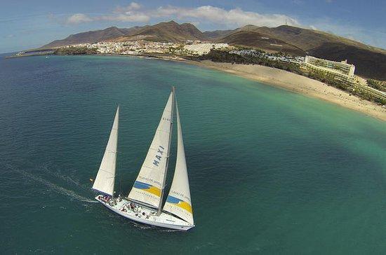 Maxi Sailing Ocean Fun