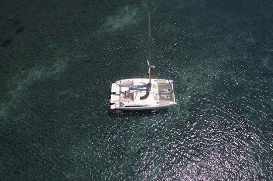 食事とドリンクを含むサントリーニ島のプライベートカタマランサンセットクルーズ
