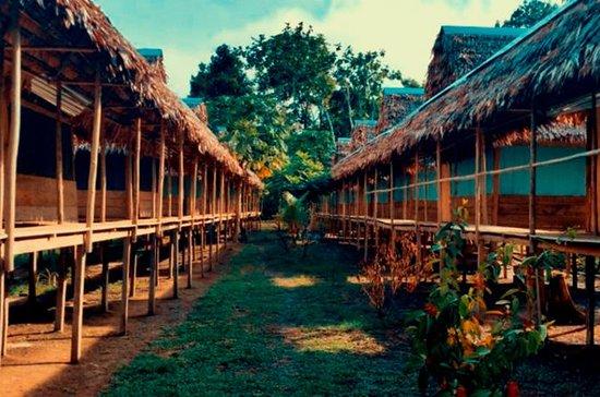 3Day Full Jungle Lodge - (Alt...