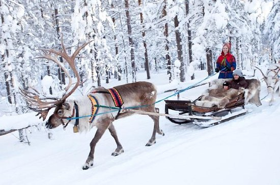 Finnish Lapland in 7 Days