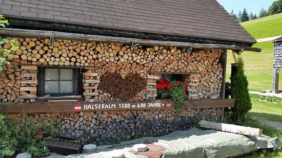 Pichl, Austria: 20180807_141216_large.jpg
