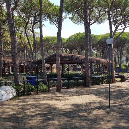 Spiaggia di Casetta Civinini Photo