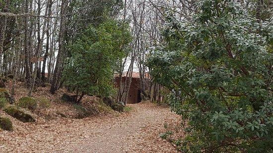 Villanueva Del Conde, Spagna: 20170311_134522_large.jpg