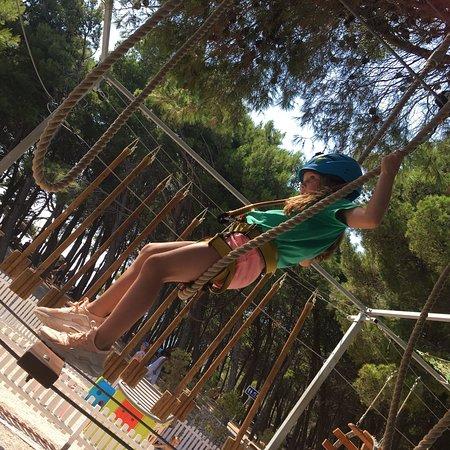 Chimpy Adventure Park