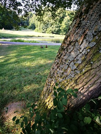 Woluwe-St-Pierre, Belgia: Parc de Woluwe Tree