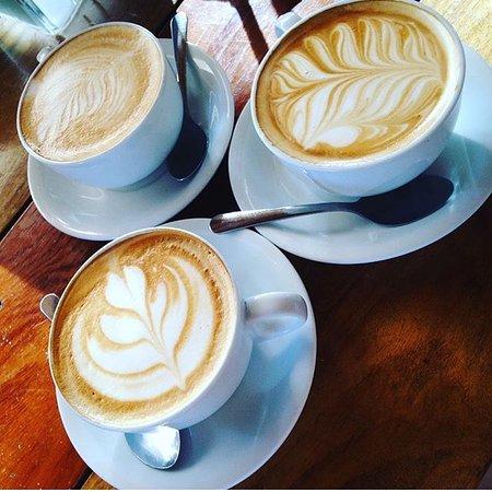Cafe Lareno Torrefaccion Coffee shop: I love drinking artwork!
