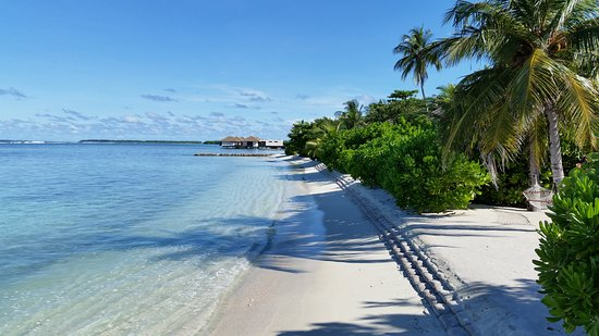 Falhumaafushi: Sunrise beach where all beach villas are located.