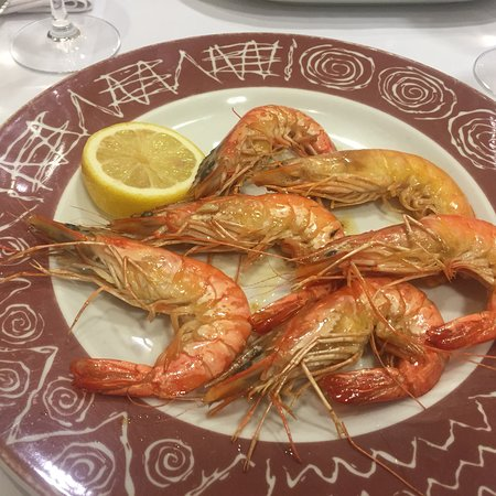 Tafalla, Spain: photo0.jpg