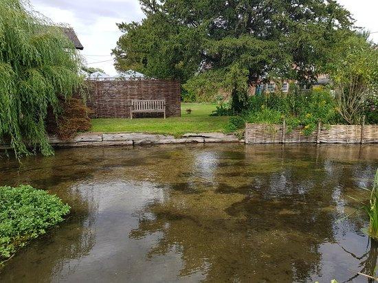 Britford, UK: 20180807_161529_large.jpg