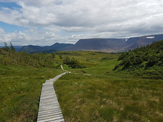 Woody Point, Canada: View of Tablelands from the top