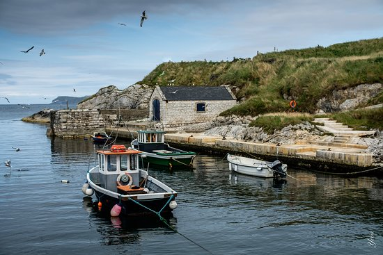 Ballintoy Harbour: boats in the harbour