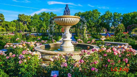 Jardines de la Rosaleda