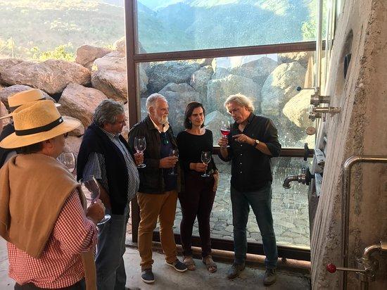 Melipilla, Chile: Visita a la bodega organica