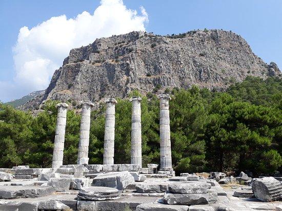 Gullubahce, Turki: 20180727_104059_large.jpg