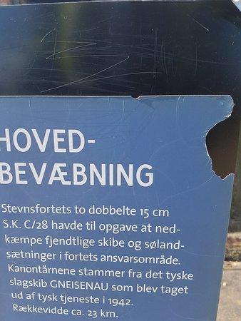 Roedvig, الدنمارك: 20180810_155959_large.jpg