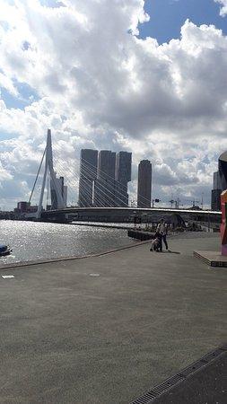 Erasmus Bridge: 20180810_112941_large.jpg