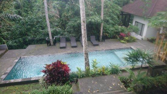 Dsc 2912 Large Jpg Picture Of The Bali Shanti Villa Ubud Tripadvisor