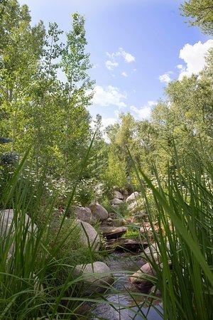 The John Denver Sanctuary: Creek