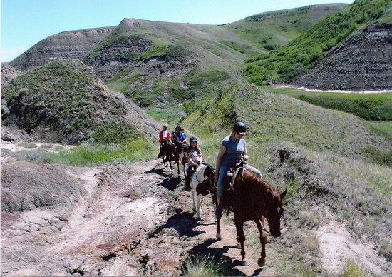Willow Creek Adventures