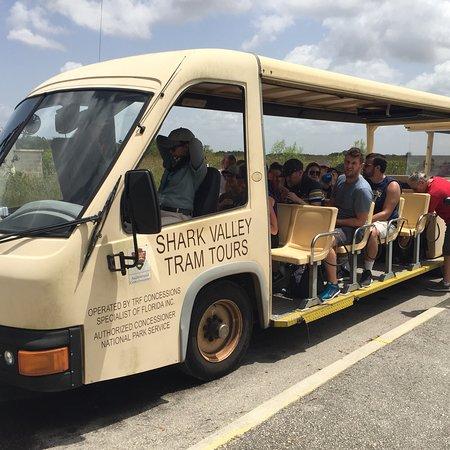 Shark Valley Tram Tours (Miami) - Aktuelle 2018 - Lohnt es sich ...