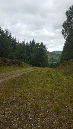 Killin, UK: Acharn Forest Walk