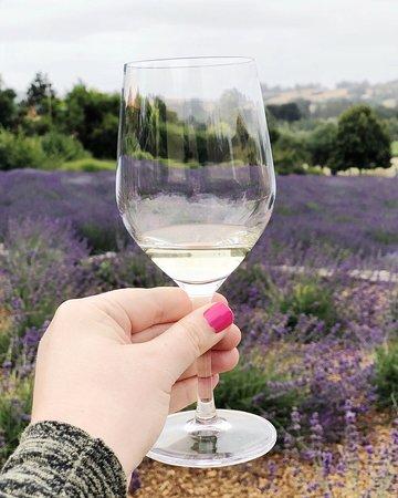 Foto de Matanzas Creek Winery