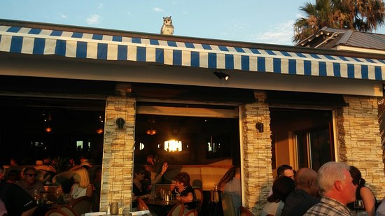 Poseidon Restaurant: owl keeping watch over surf side seating