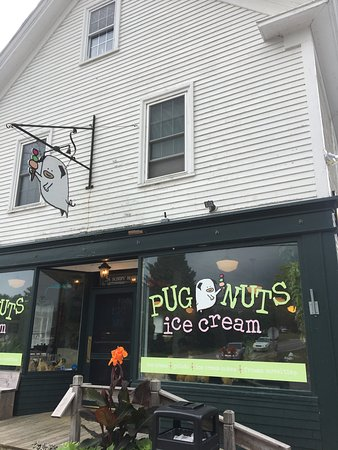 Surry, ME: A stop worth making!