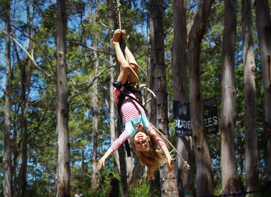Denmark Thrills Adventure Park