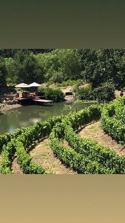 Solvang, CA: Enjoy a picnic by a pond surrounded by vineyards!