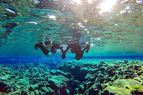 Snorkel mellem kontinenter i Silfra