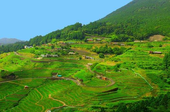 Kumano Kodo, Mie: 3 Tage Ise-ji Trail...