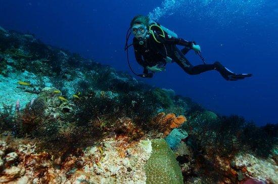 Pacchetto immersioni doppio a Cozumel