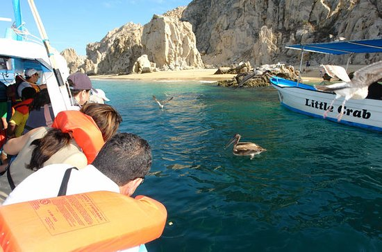 Los Cabos Shore Excursion: Cabo Lands ...