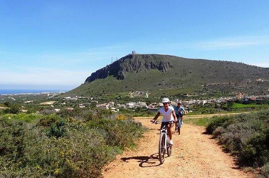 Small Villages Cretan Nature & Aposelemis canyon E-Bike tour  with...