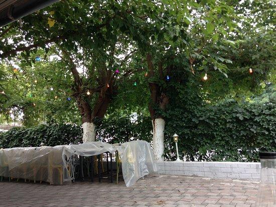 Agios Pavlos, กรีซ: αυλή