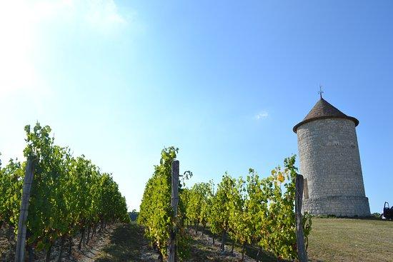 Chateau de Panisseau