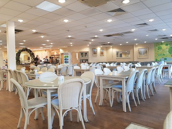 Little Eaton, UK: Interior, dining area