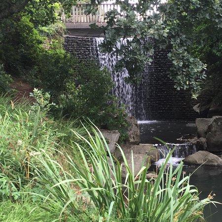 Jardin du Conservatoire Botanique National de Brest : photo6.jpg