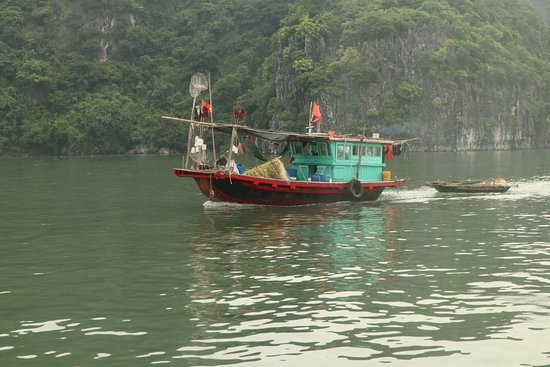 Indochina Junk: 20180810092524_IMG_0876_large.jpg