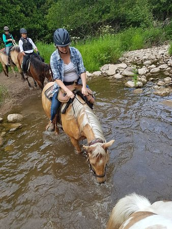 Grey County, Canadá: Riding through the stream on our 1 or 2 hour trail ride