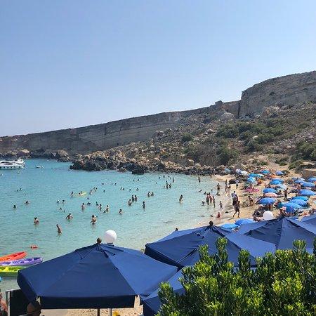 Paradise Bay: photo0.jpg