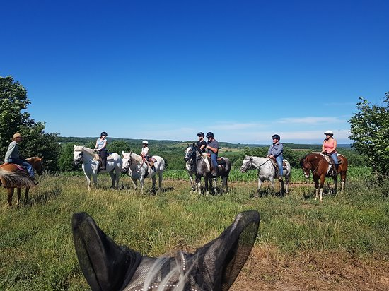 Windsong Horse & Carriage Ranch - Horseback Trail Rides