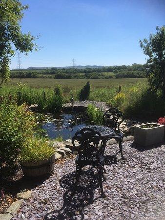 Llanerchymedd, UK: Pond view