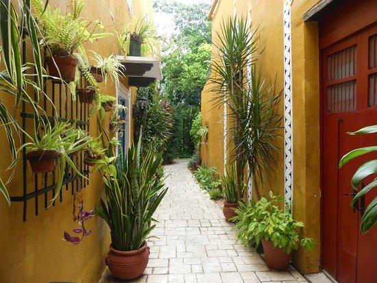 Casa Tía Micha: 1000669_large.jpg