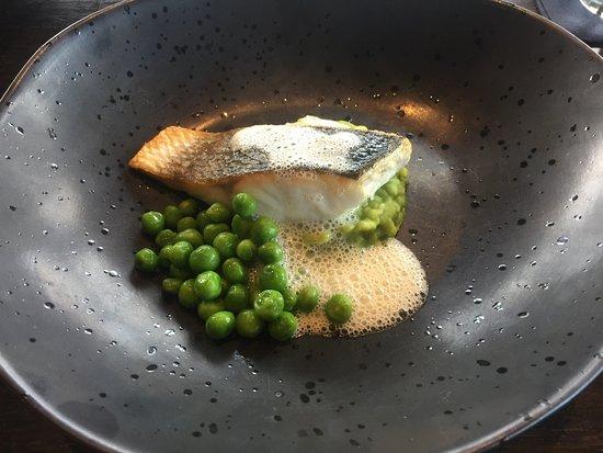 Paterswolde, Países Baixos: Zeebaars met doperwten en doperwten puree met mosselroom