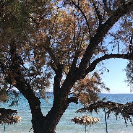 Super ontspannen strand